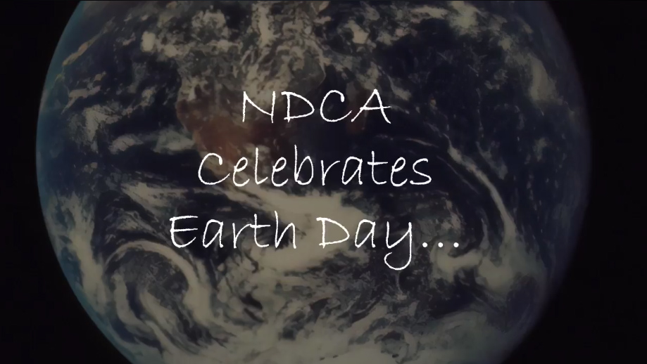 screenshot of earth day video